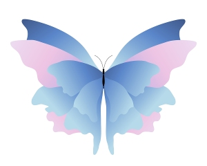 Pink_Blue_Butterfly_2845076