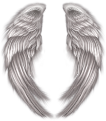 AngelWingspsd72371