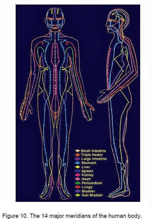 meridianos principales del cuerpo